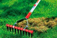 Combing of lawn