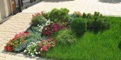 Services in green plantations care