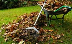 Cleaning of garden