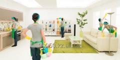 Заботливая уборка (профессиональная уборка квартир, домов, офисов и пр.)