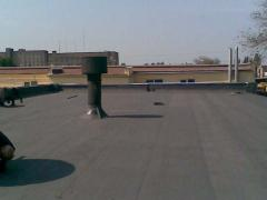 Repair soft of roofs