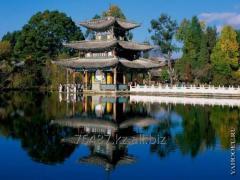 Servicii de traducere din/spre limba Chineza