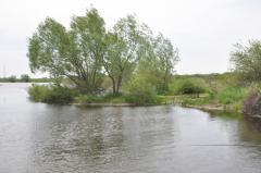 Эко-отдых и эко-рыбалка!!! 8 км от г. Костаная
