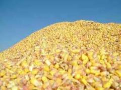 Переработка сахара, зерновых, масла растительного