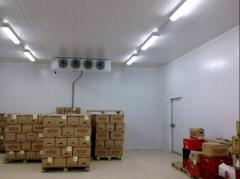 Storage of food products and beverages