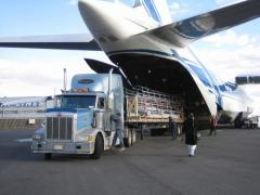 Combined cargo transportation