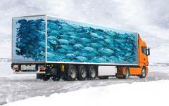 Перевозки груза рефрижераторными контейнерами