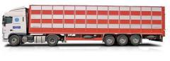 Перевозка скотовозом