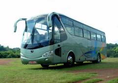 Перевозка пассажиров автотранспортом
