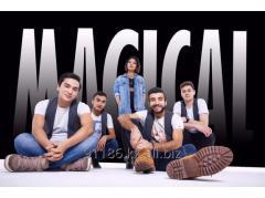 Музыкальная группа ♪ MAGICAL ♫ Live Band