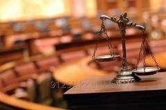 Представительство в суде (специализация - экономические споры)
