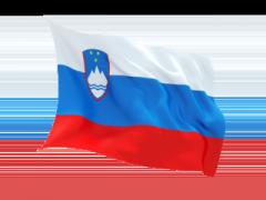Письменный перевод на Словенский