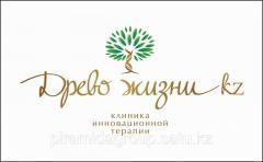 Разработка логотипа в Алматы, арт. 10523012