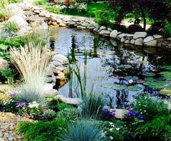 Создание искусственных водоемов прудов