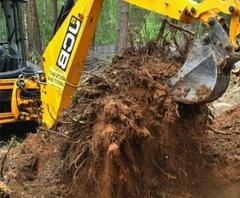 Удаление деревьев и пней