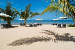 Servizi dell'agente del turismo all'organizzazione del turismo d'uscita
