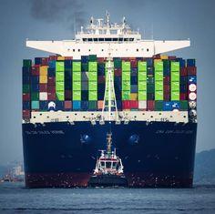 Осмотр повреждений груза, контейнеров и других транспортных средств, оценка ущерба