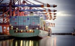 Инспекция грузов при выгрузке/погрузке, контроль прохождения грузов
