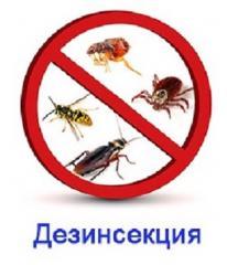 Уничтожения насекомых Дезинсекция