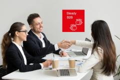 Steady B2B (Бизнес для Бизнеса), программа