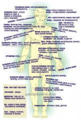 Психосоматика, услуги психолога