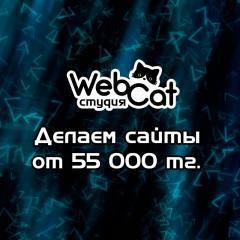 Создание сайта от 55 000 тенге