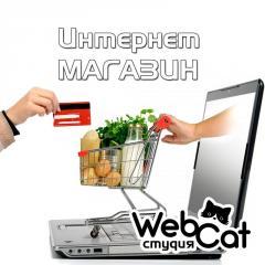 Создать интернет магазин от 150 000 тенге