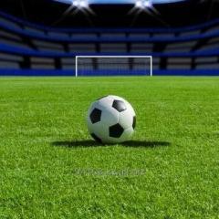 Обогрев футбольных полей