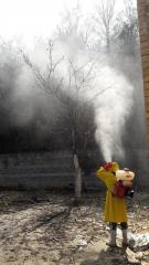 Химическая обработка территории от насекомых. Опрыскивание деревьев.