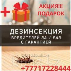 Уничтожение тараканов в ресторанах, гостиницах, развлекательных комплексов