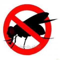 Extermination of flies, fight against flies
