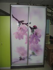 Drawing images on glass. A photo printing on glass