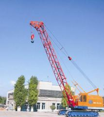 Services of the crane caterpillar