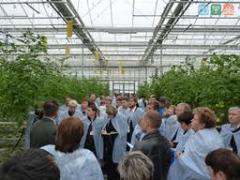 Консультации агронома по выращиванию растений в