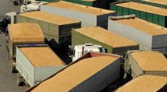 Forwarding of grain crops