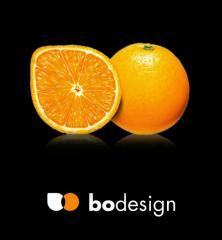Создание фирменного стиля,  логотипа, ...