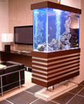 Service of aquariums
