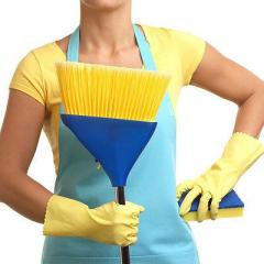 Specialized works on cleaning