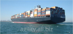 Cargo transportation is sea