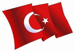 Courses on TURKISH from Open Door!