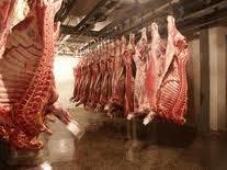 Хранение мясной продукции