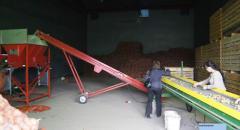 Услуги хранения овощей и фруктов в Астане