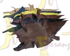 Обувь из рептилии, Индивидуальный пошив обуви