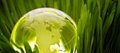ИСО 14001 Cистема экологического менеджмента