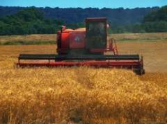 Селекция сельскохозяйственных культур