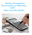 Consultations on conducting accounting