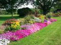 Обустройство цветников