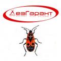 Destruction of wood bugs of Almaty