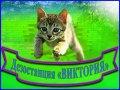 Услуги дезинфекции, уничтожение грызунов, дератизация, насекомых, дезинсекция