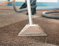 Professional cleaning of carpets